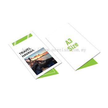 A3 Size Brochure
