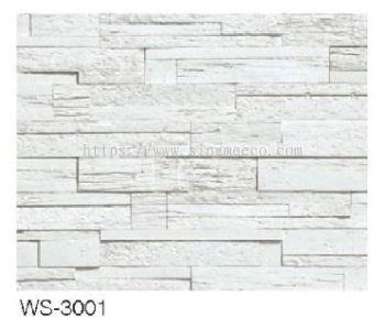 WS 3001 50 x 12cm