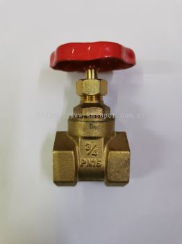"CHILLED WATER PIPING 3/4"" GATE VALVE"