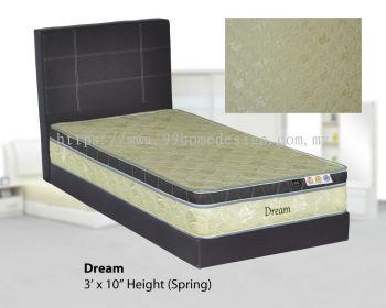 MT Dream (Spring)