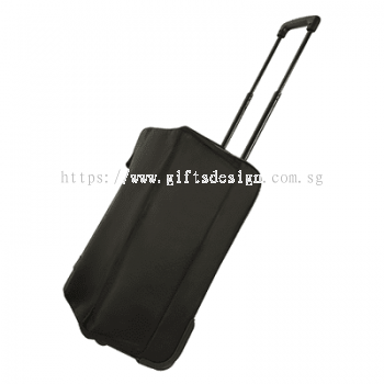 Foldable Cabin Size Trolley Luggage