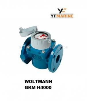 Potable Water Meter - Brand Woltmann GKM H4000