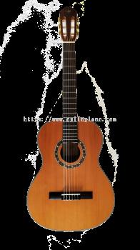 Classical Guitar C-100G