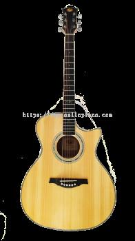 Acoustic Guitar PD-300CM