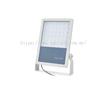 LED Flood Light B241
