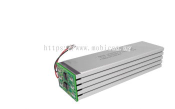 EEMB LP7851119F LifePO4 Battery Cell
