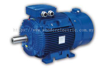 WVF Series Inverter Duty Motors