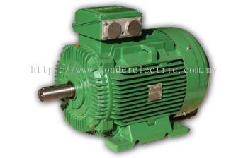 SWE (IE3) Premium Efficiency Cast Iron Motors