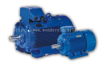 WY (IE1) Low-Voltage High Output Motors