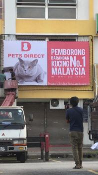 Pet's Direct
