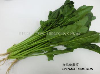 Spinach Cameron