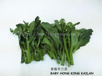 Baby Hong Kong Kailan