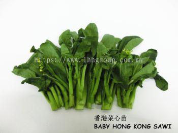 Baby Hong Kong Sawi