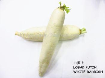 White Raddish