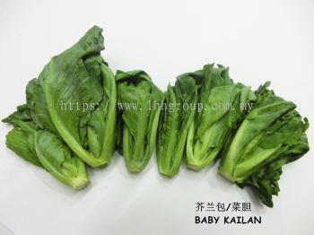 Baby Kailan