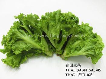 Thai Lettuce