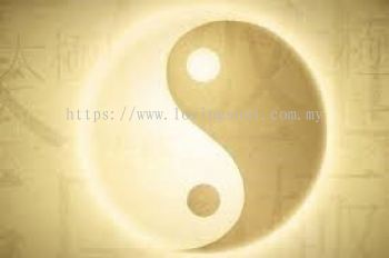 Traditional Chinese Medicine Supplement