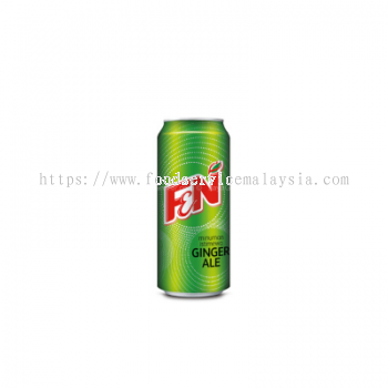 Ginger Ale (24 x 325 ml)