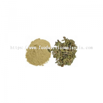 Fennel Powder (1 x 1 kg)