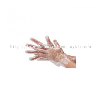 PE Disposable Hand Glove (100��s x 10 box)