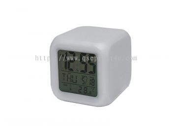 EC5010 - Electronic Clock