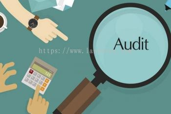 Introduction of Audit