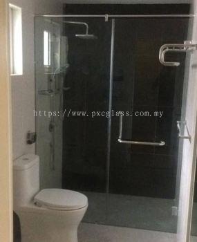 Shower Screen Swing Door