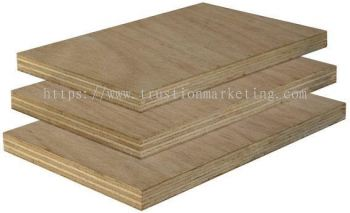 Construction Plywood 12mm