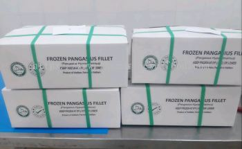 Dory Fish Fillet/Pangasius Fillet