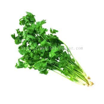 Chinese Celery - Daun Sup (150 gm)