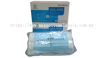 WECAN Adult Face Mask(Non-Medical)