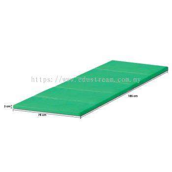 P243 Foldable Multipurpose Mattress