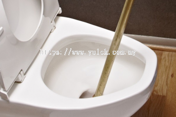 Toilet Blockage Services