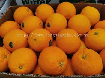 Loc sweet seedless orange Rm20/6pcs 90%sweet