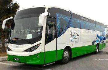 HINO Big Coach (44 Seats)
