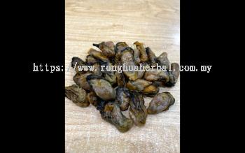 Korea Dried Oyster