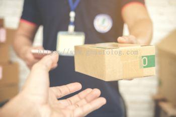 Delivery Services Transportation