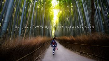 FOCUS JAPAN + GOURMET SPECIAL