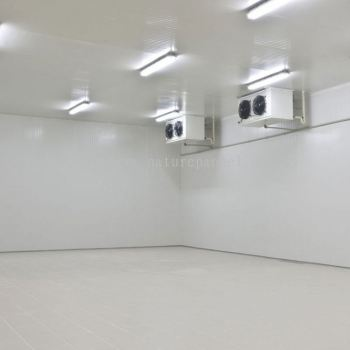 Polyurethane Insulated Cold Room / Controlled-Temperature Room