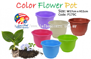 17cm Pasu Pokok Bunga 6.5inc Flower Pot L179C (Random Colour)