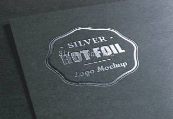 Hot Stamping Silver Business Card ������Ƭ