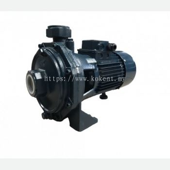 Back to back Centrifugal Pump (Double Impeller) (II)