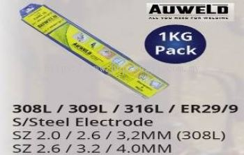S/S Electrode 316