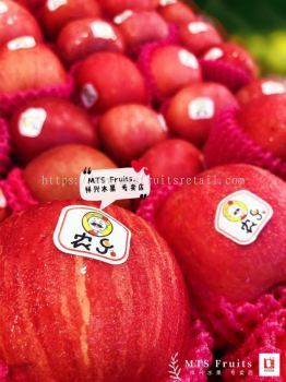 ��ʿƻ��  Apple medium fuji