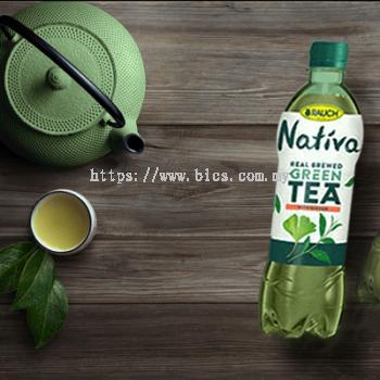 Nativa Green Tea Ginkgo