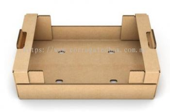 Corrugated Paper Tray For Food & Fruits