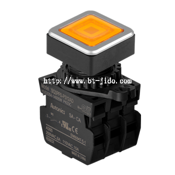 SQ3PFS Series 30 mm Push Button Switches