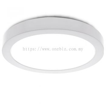 Ceiling Light LED Round Surface