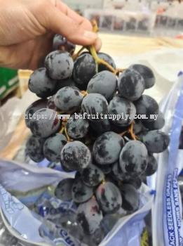 Chile Black Grape