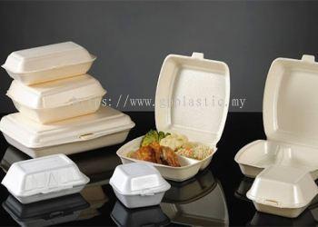 Foam lunch box